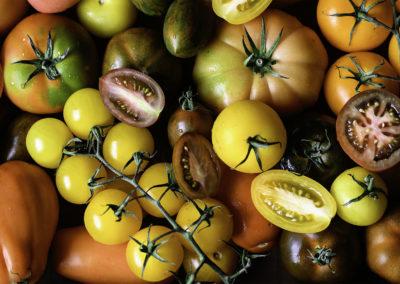 Isle-of-Wight-Tomatoes-Seasonal-Ingredients-Matthew-Owen-Food-Photography-Staffordshire-Cheshire